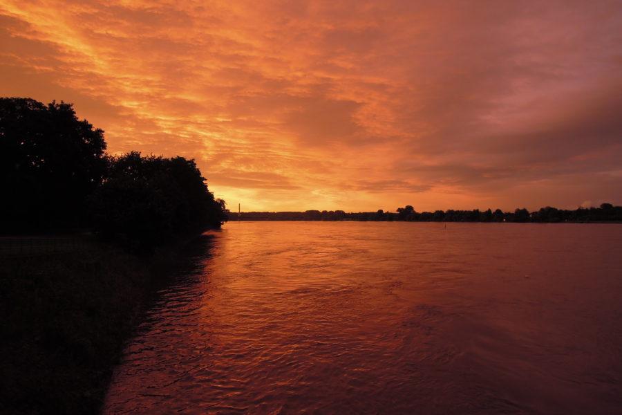 Sonnenuntergang am Rhein im Bonner Norden